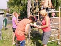 Zeskamp Palmboom maken